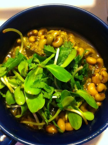 Curried black eyed peas with fresh sprouts